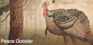 Sunday, November 15, 2:00 pm – Peace Gobbler Fund Raiser at Old Dog Tavern