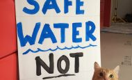 Friday, April 15, 2016 – Safe Water, Not War.