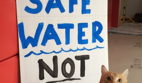 Friday, April 15, 2016 – Safe Water, Not War.